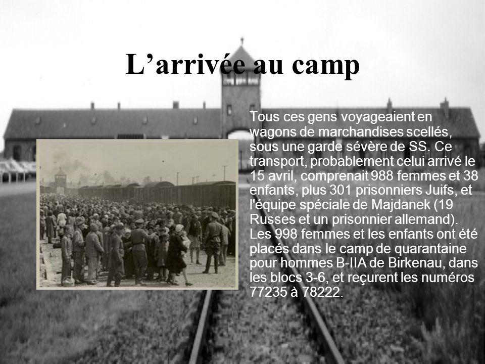Larrivée au camp Tous ces gens voyageaient en wagons de marchandises scellés, sous une garde sévère de SS. Ce transport, probablement celui arrivé le