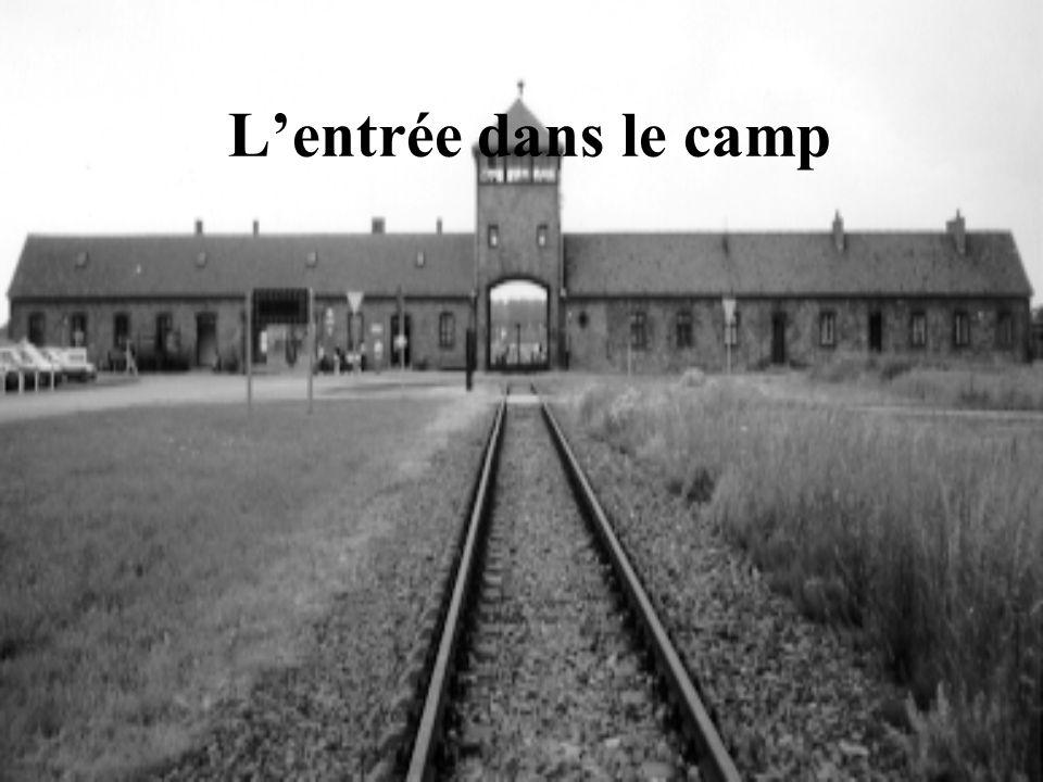 Lentrée dans le camp