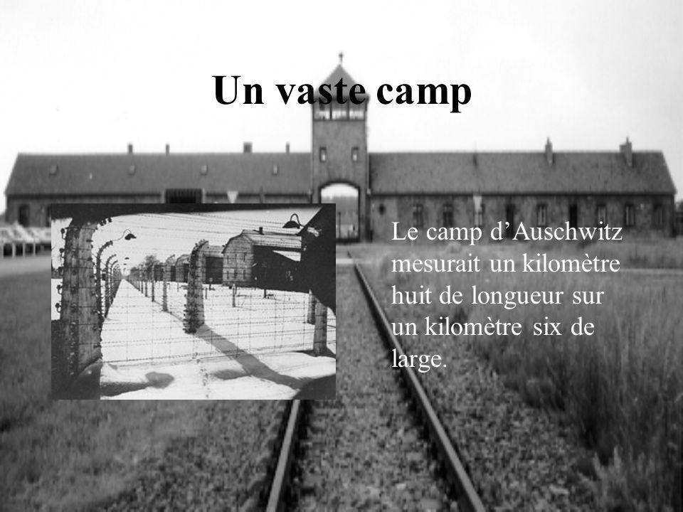 Un vaste camp Le camp dAuschwitz mesurait un kilomètre huit de longueur sur un kilomètre six de large.