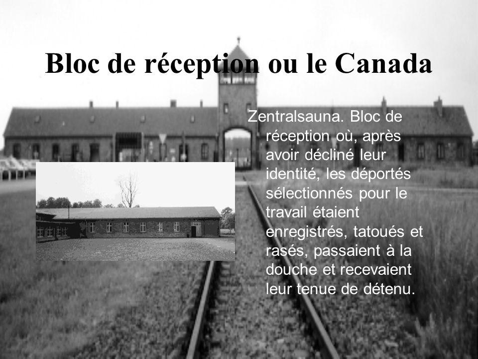 Bloc de réception ou le Canada Zentralsauna. Bloc de réception où, après avoir décliné leur identité, les déportés sélectionnés pour le travail étaien
