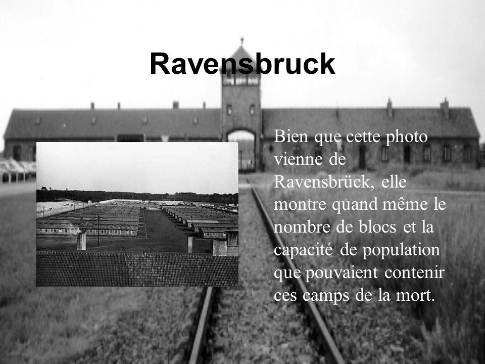 Ravensbruck Bien que cette photo vienne de Ravensbrück, elle montre quand même le nombre de blocs et la capacité de population que pouvaient contenir