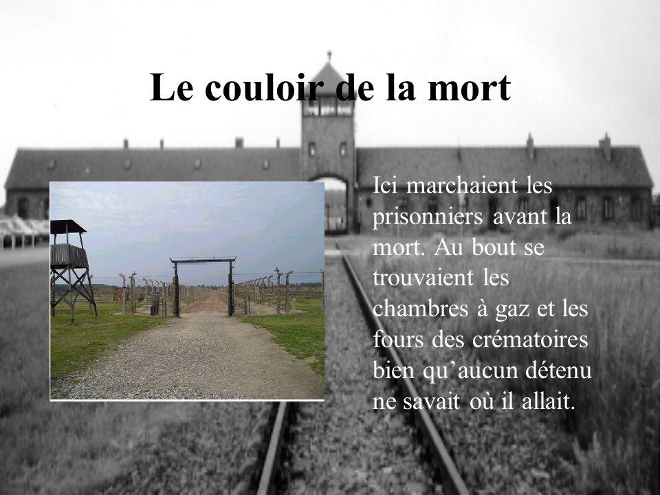 Le couloir de la mort Ici marchaient les prisonniers avant la mort. Au bout se trouvaient les chambres à gaz et les fours des crématoires bien quaucun