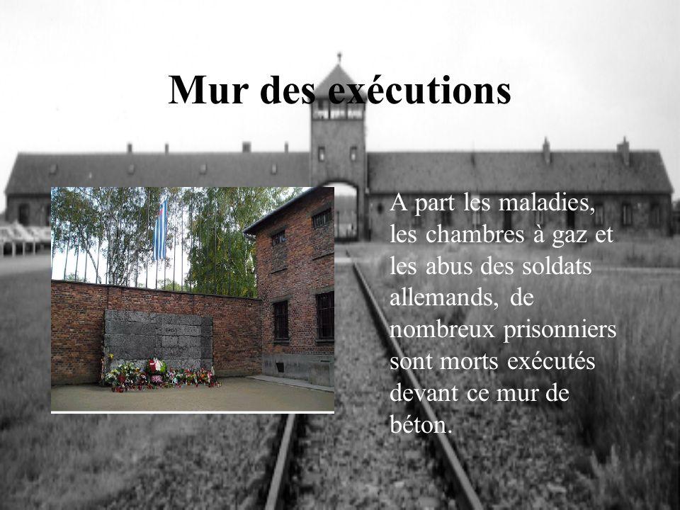 Mur des exécutions A part les maladies, les chambres à gaz et les abus des soldats allemands, de nombreux prisonniers sont morts exécutés devant ce mu