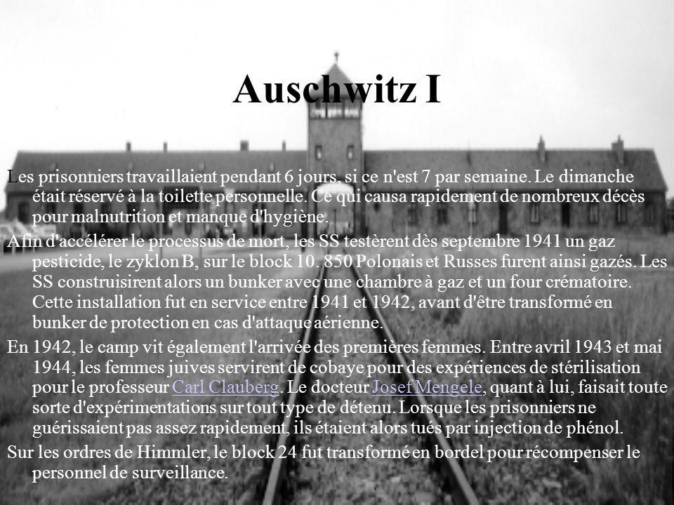 Auschwitz I Les prisonniers travaillaient pendant 6 jours, si ce n'est 7 par semaine. Le dimanche était réservé à la toilette personnelle. Ce qui caus