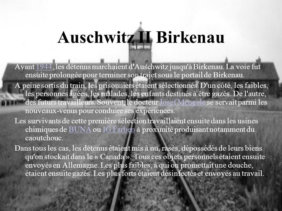 Auschwitz II Birkenau Avant 1944, les détenus marchaient d'Auschwitz jusqu'à Birkenau. La voie fut ensuite prolongée pour terminer son trajet sous le