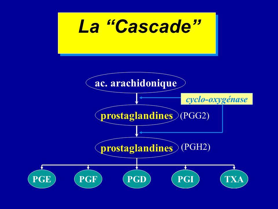 La Cascade ac. arachidonique prostaglandines (PGG2) cyclo-oxygénase prostaglandines (PGH2) PGEPGFPGDPGITXA