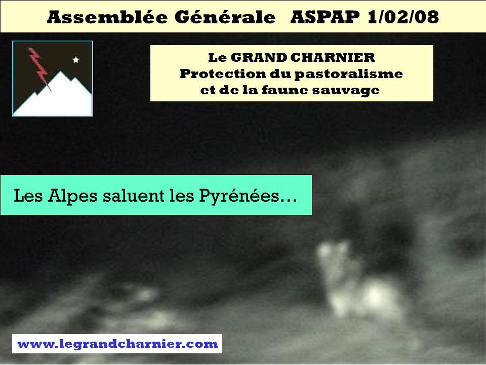 Assemblée Générale ASPAP 1/02/08 Le GRAND CHARNIER Protection du pastoralisme et de la faune sauvage Les Alpes saluent les Pyrénées… www.legrandcharnier.com