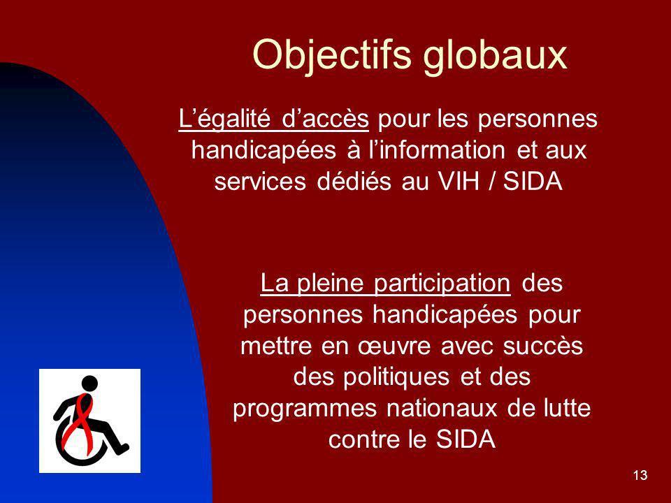 13 Objectifs globaux Légalité daccès pour les personnes handicapées à linformation et aux services dédiés au VIH / SIDA La pleine participation des personnes handicapées pour mettre en œuvre avec succès des politiques et des programmes nationaux de lutte contre le SIDA