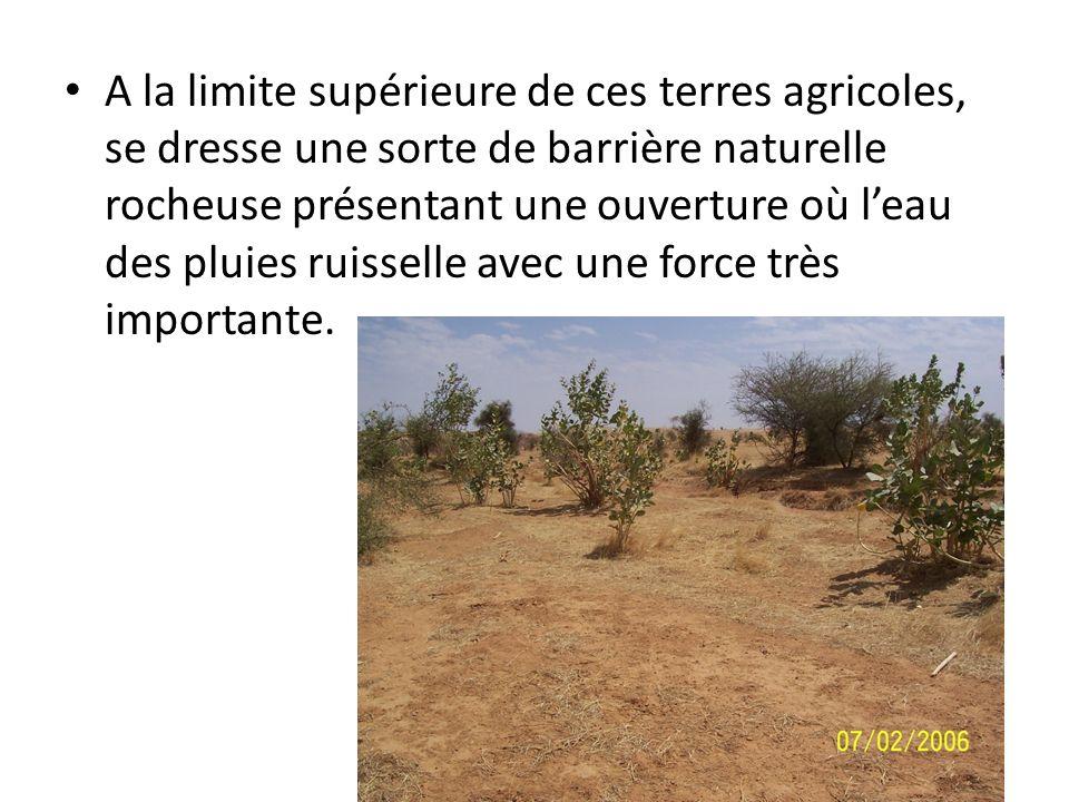 A la limite supérieure de ces terres agricoles, se dresse une sorte de barrière naturelle rocheuse présentant une ouverture où leau des pluies ruissel