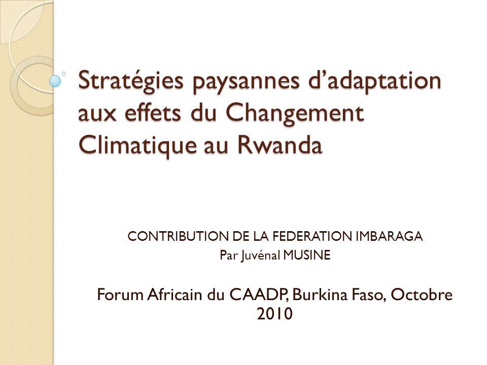 Stratégies paysannes dadaptation aux effets du Changement Climatique au Rwanda CONTRIBUTION DE LA FEDERATION IMBARAGA Par Juvénal MUSINE Forum Africain du CAADP, Burkina Faso, Octobre 2010