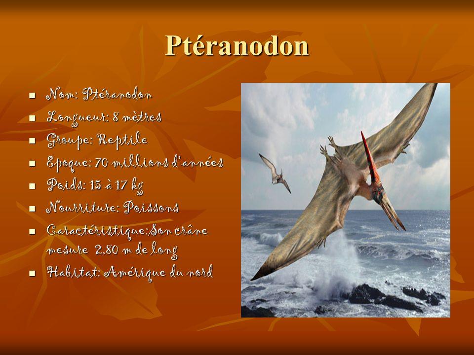 Ptéranodon Nom: Ptéranodon Nom: Ptéranodon Longueur: 8 mètres Longueur: 8 mètres Groupe: Reptile Groupe: Reptile Epoque: 70 millions dannées Epoque: 7