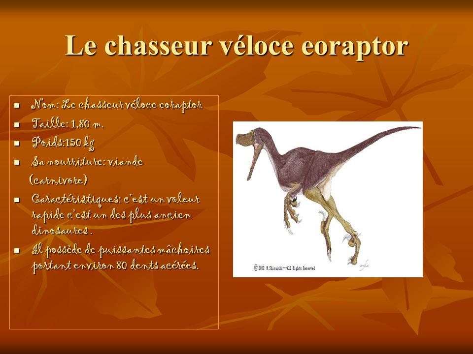 Le chasseur véloce eoraptor Nom: Le chasseur véloce eoraptor Nom: Le chasseur véloce eoraptor Taille: 1,80 m. Taille: 1,80 m. Poids:150 kg Poids:150 k