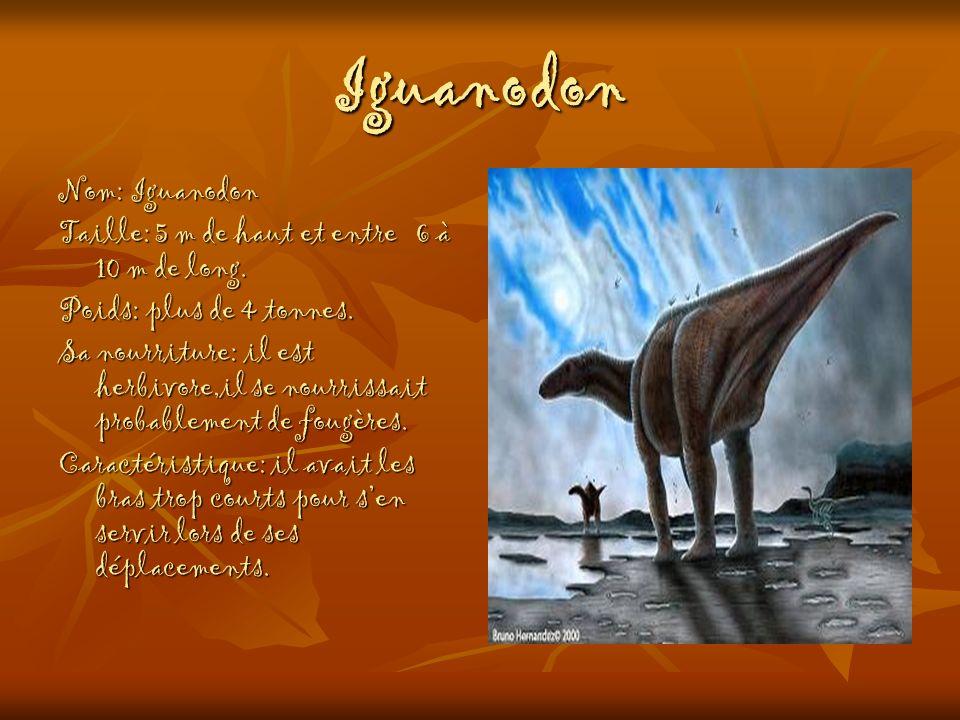 Iguanodon Nom: Iguanodon Taille: 5 m de haut et entre 6 à 10 m de long. Poids: plus de 4 tonnes. Sa nourriture: il est herbivore,il se nourrissait pro