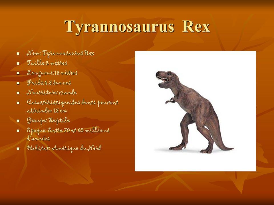 Tyrannosaurus Rex Nom: Tyrannosaurus Rex Nom: Tyrannosaurus Rex Taille:5 mètres Taille:5 mètres Longueur:13 mètres Longueur:13 mètres Poids:6,8 tonnes