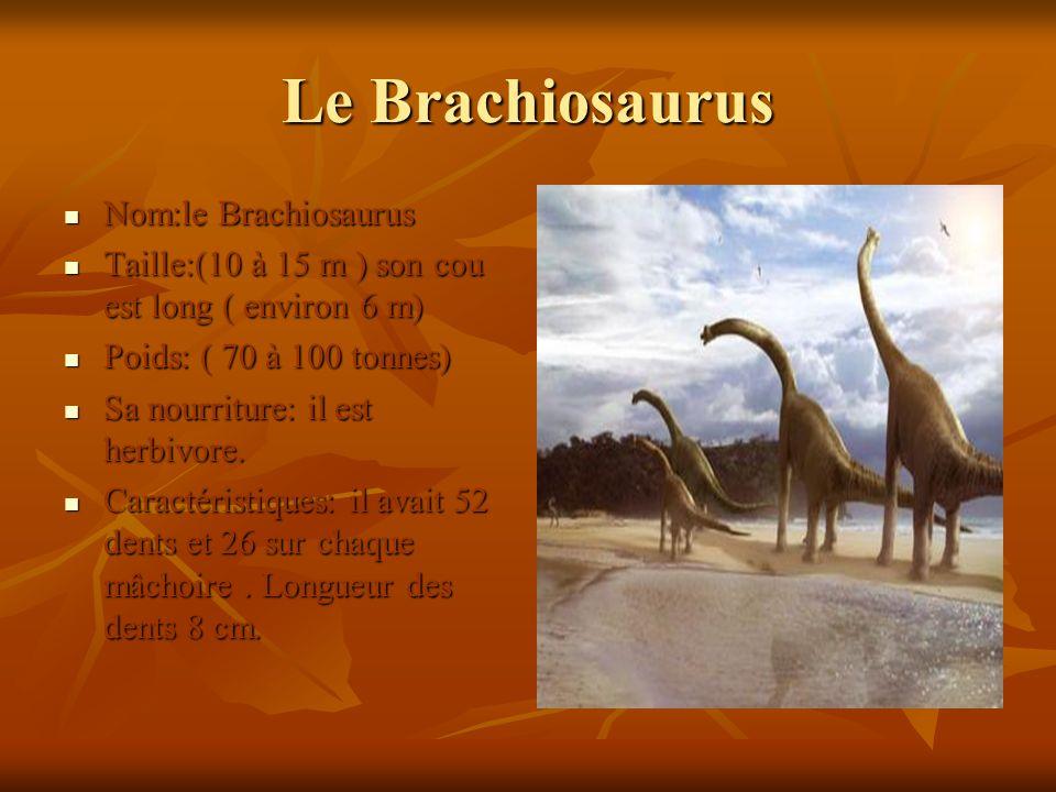 Le Brachiosaurus Nom:le Brachiosaurus Nom:le Brachiosaurus Taille:(10 à 15 m ) son cou est long ( environ 6 m) Taille:(10 à 15 m ) son cou est long (
