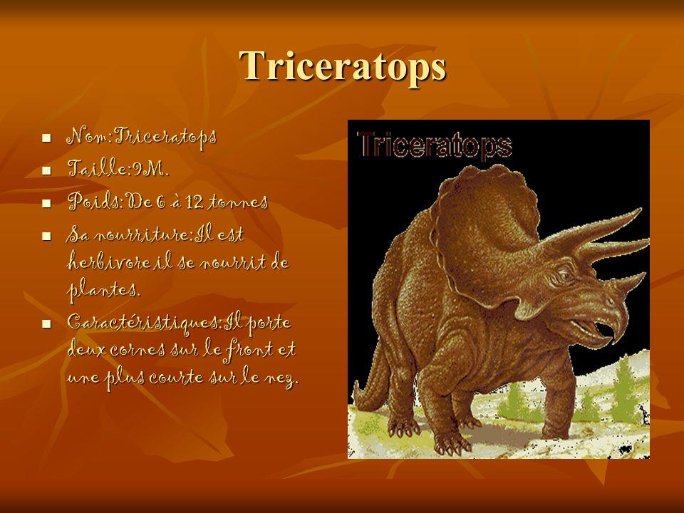 Triceratops Nom:Triceratops Nom:Triceratops Taille:9M. Taille:9M. Poids:De 6 à 12 tonnes Poids:De 6 à 12 tonnes Sa nourriture:Il est herbivore il se n