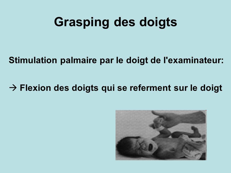 Grasping des doigts Stimulation palmaire par le doigt de l'examinateur: Flexion des doigts qui se referment sur le doigt