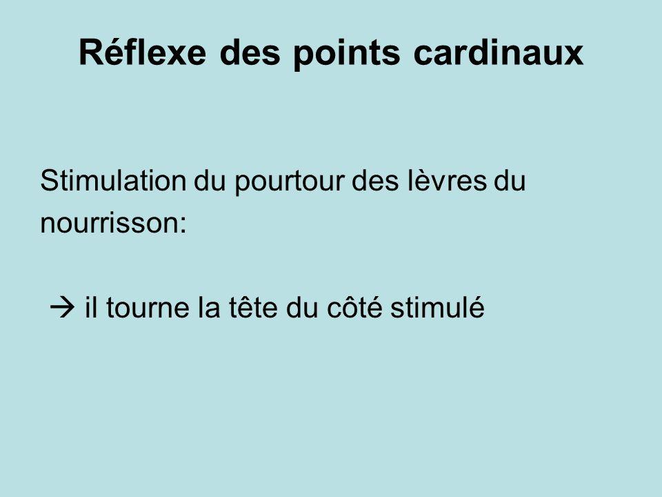 Réflexe des points cardinaux Stimulation du pourtour des lèvres du nourrisson: il tourne la tête du côté stimulé