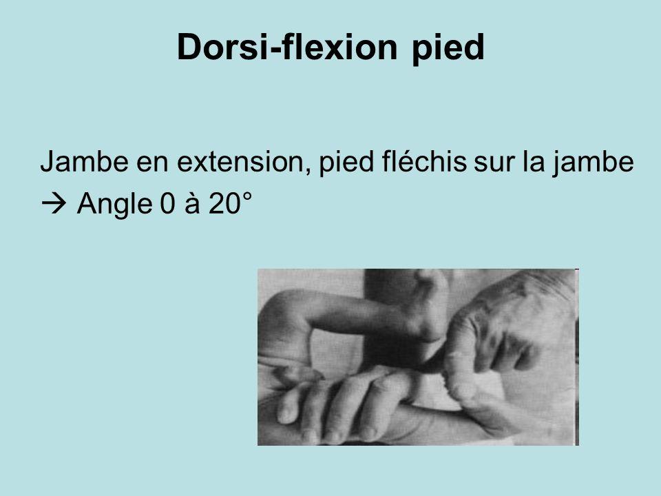 Dorsi-flexion pied Jambe en extension, pied fléchis sur la jambe Angle 0 à 20°