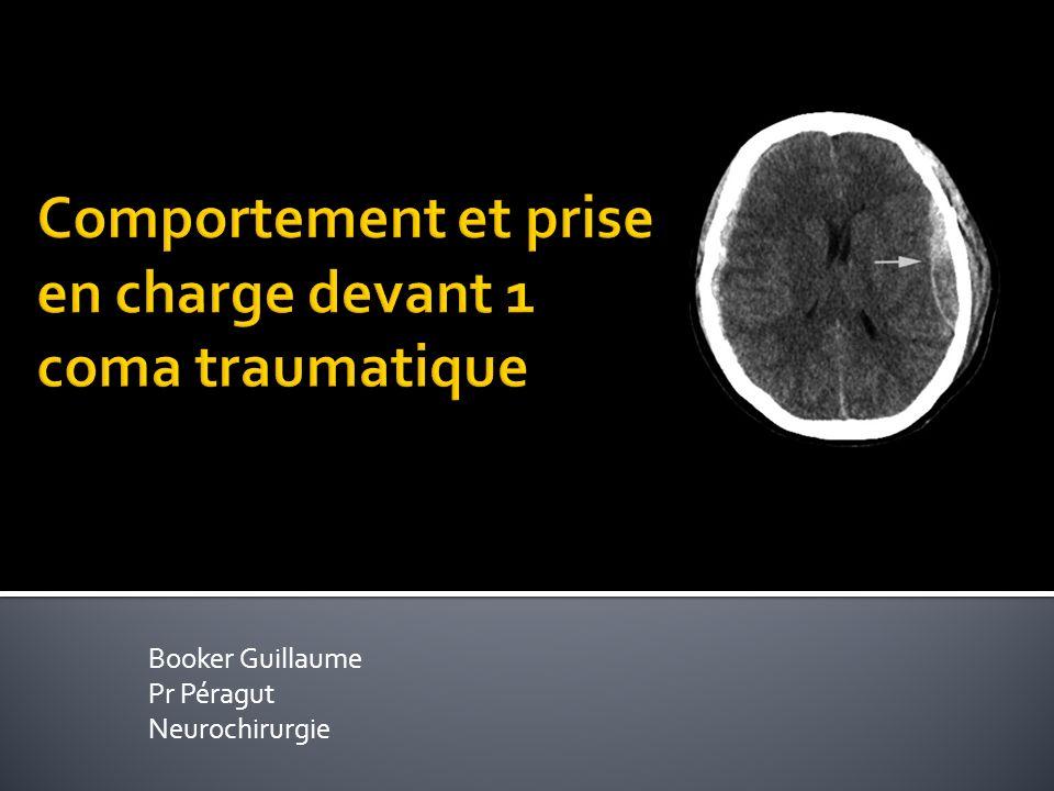 Booker Guillaume Pr Péragut Neurochirurgie