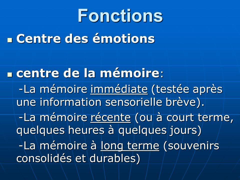 Fonctions Centre des émotions Centre des émotions centre de la mémoire : centre de la mémoire : -La mémoire immédiate (testée après une information se