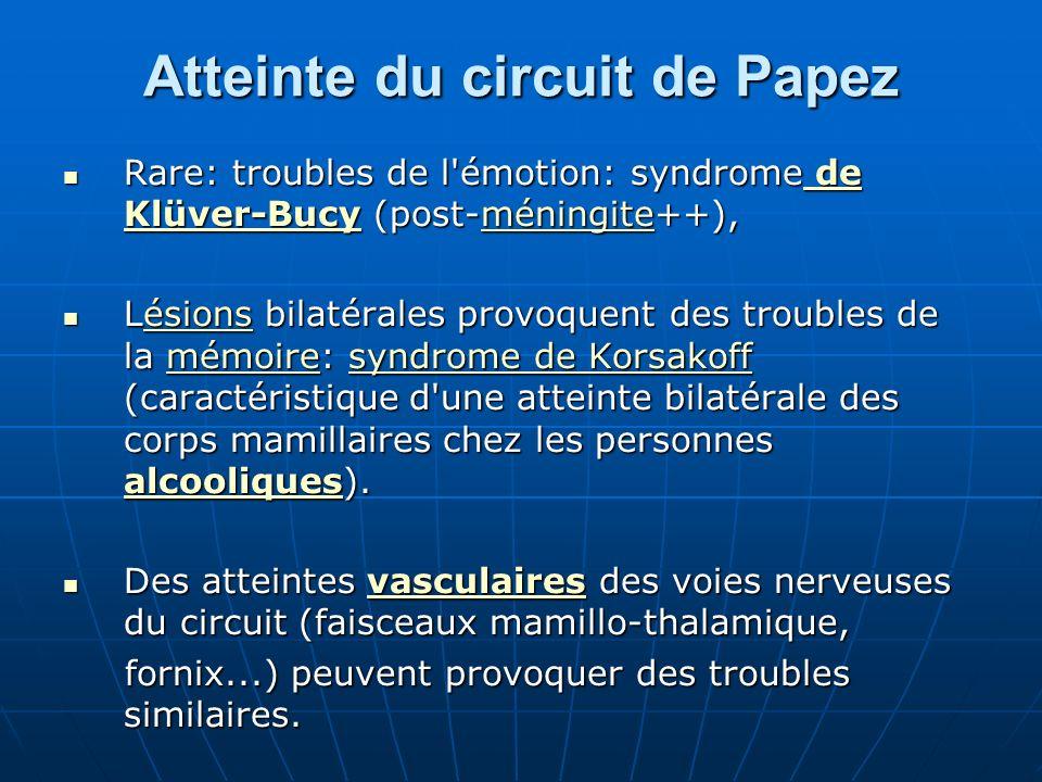 Atteinte du circuit de Papez Rare: troubles de l'émotion: syndrome de Klüver-Bucy (post-méningite++), Rare: troubles de l'émotion: syndrome de Klüver-