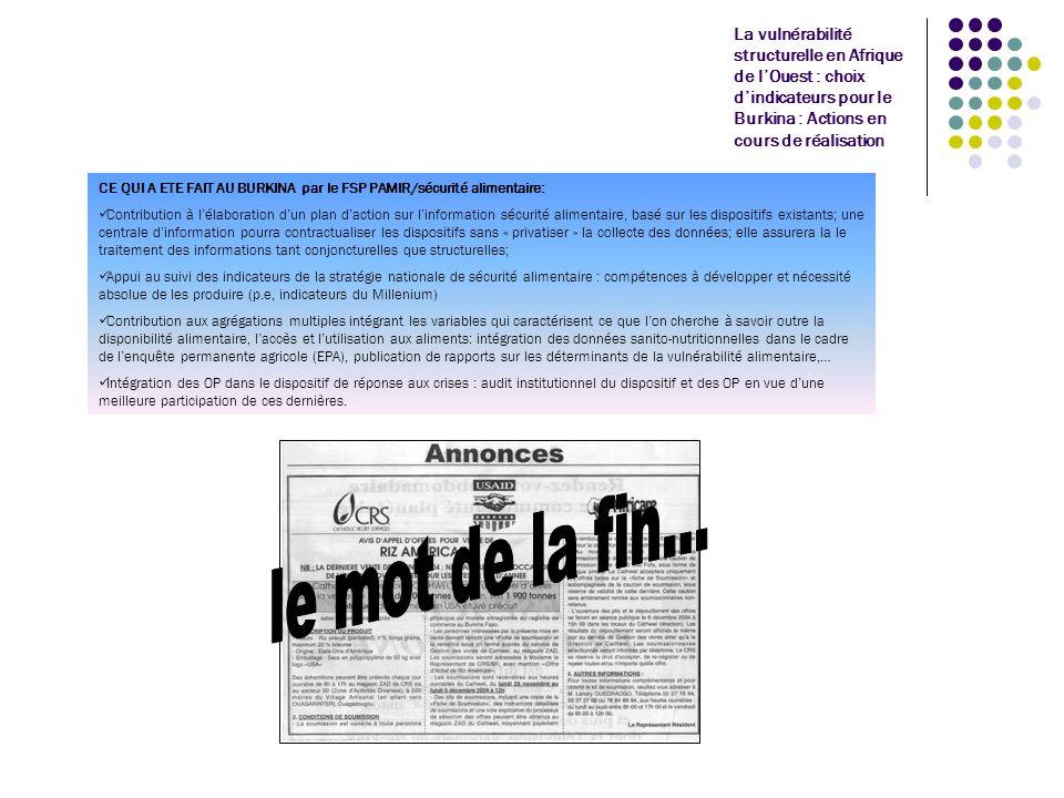 La vulnérabilité structurelle en Afrique de lOuest : choix dindicateurs pour le Burkina : Actions en cours de réalisation CE QUI A ETE FAIT AU BURKINA