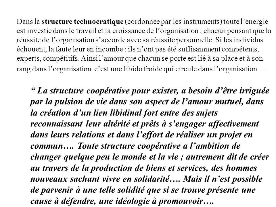 Dans la structure technocratique (cordonnée par les instruments) toute lénergie est investie dans le travail et la croissance de lorganisation ; chacu