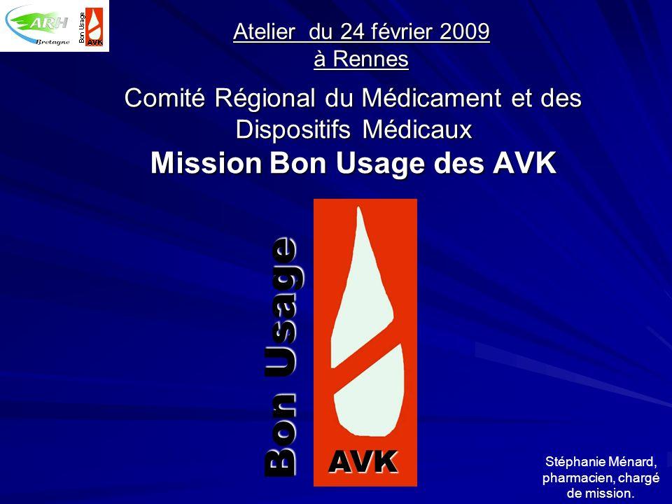 Comité Régional du Médicament et des Dispositifs Médicaux Mission Bon Usage des AVK AVK Bon Usage Atelier du 24 février 2009 à Rennes Stéphanie Ménard