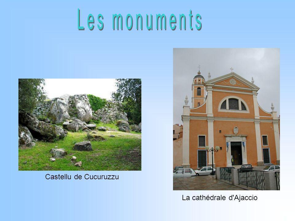Castellu de Cucuruzzu La cathédrale d'Ajaccio