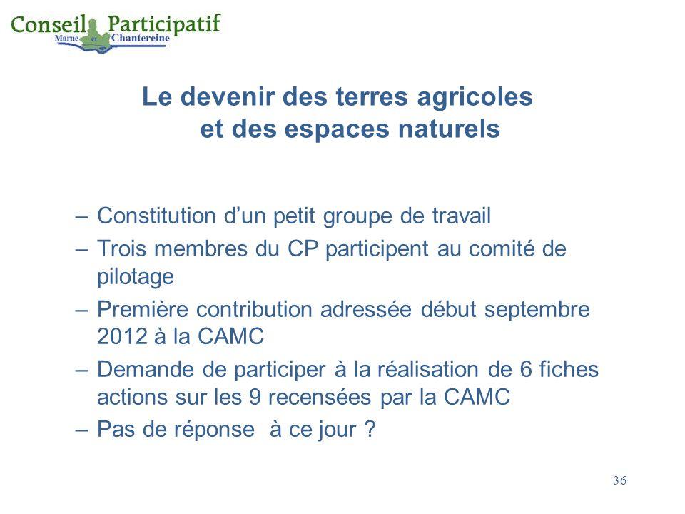 Le devenir des terres agricoles et des espaces naturels –Constitution dun petit groupe de travail –Trois membres du CP participent au comité de pilota