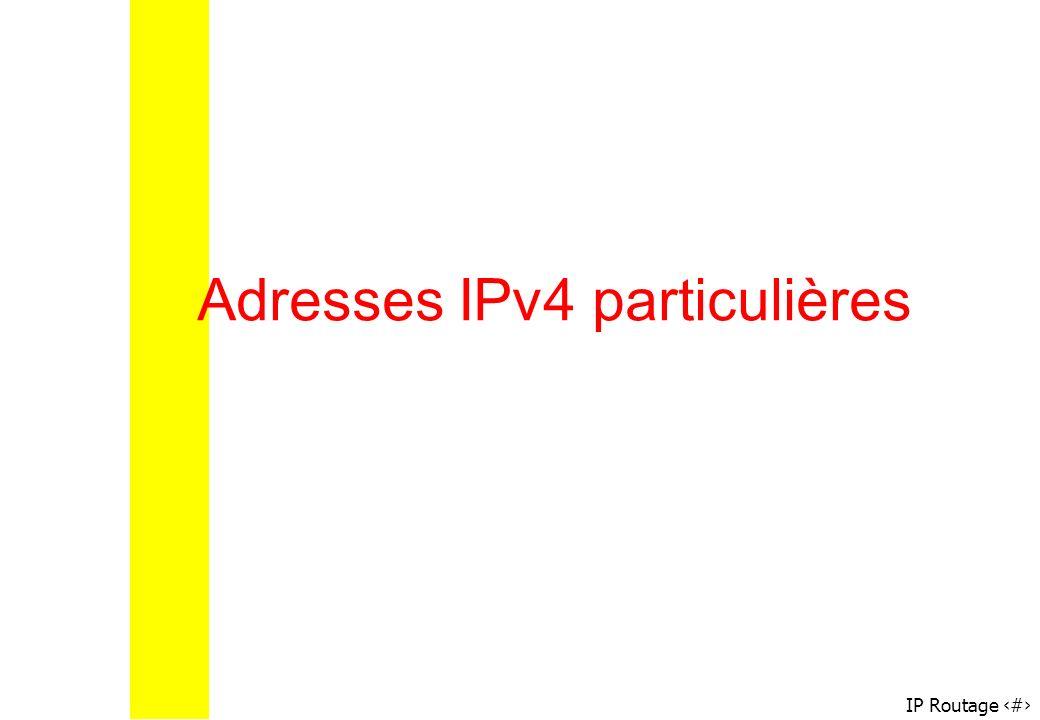IP Routage 13 Adresses IPv4 particulières