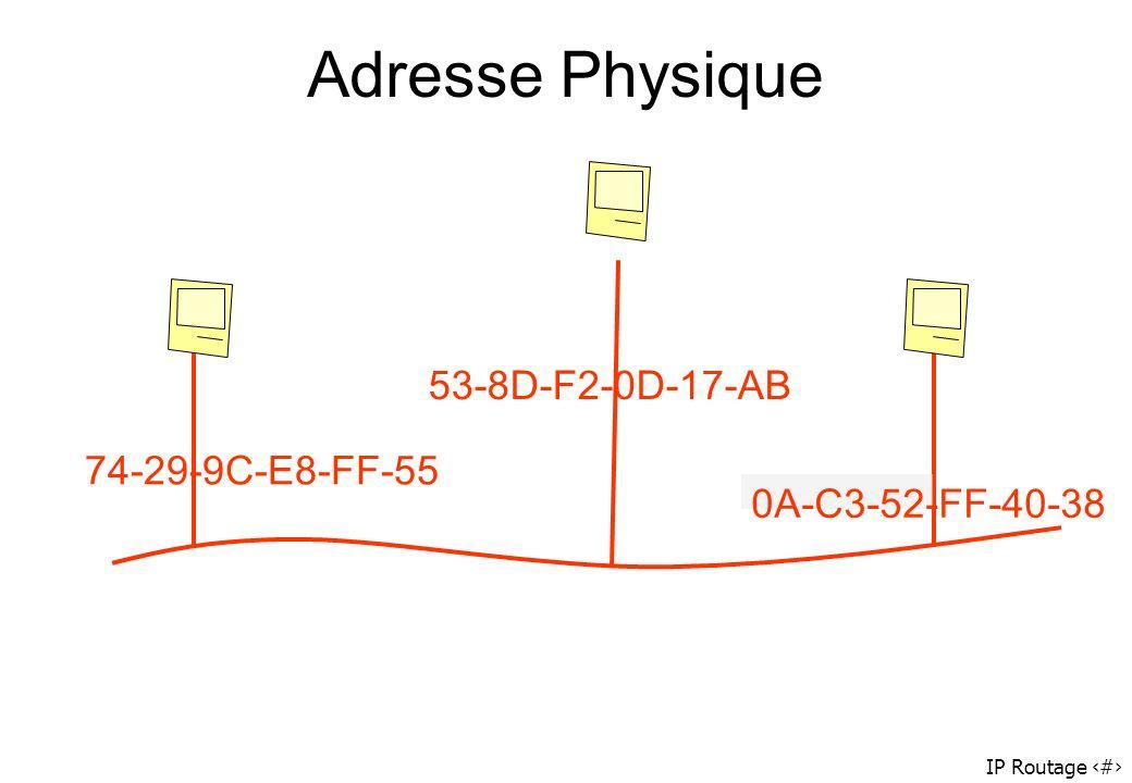 IP Routage 53 Adresse Physique 74-29-9C-E8-FF-55 53-8D-F2-0D-17-AB 0A-C3-52-FF-40-38