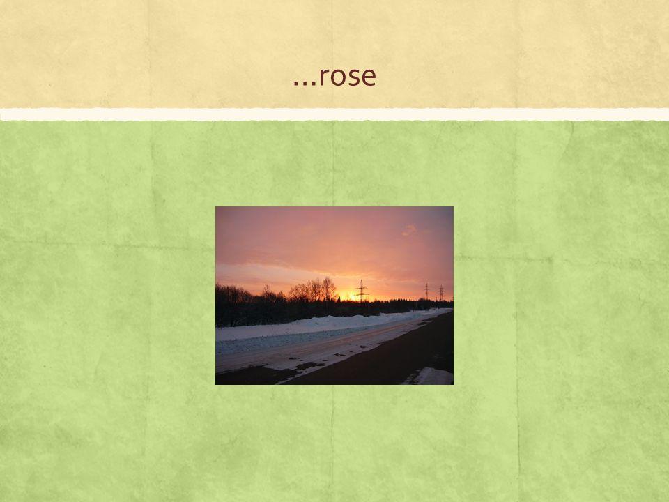 …rose