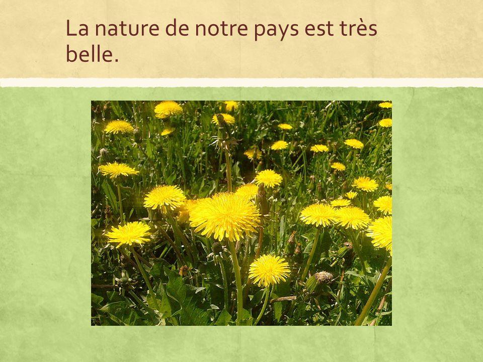 La nature de notre pays est très belle.