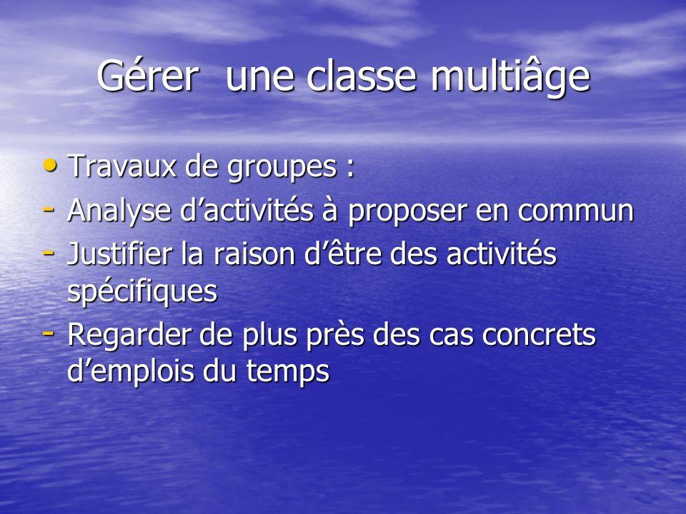 Gérer une classe multiâge Travaux de groupes : Travaux de groupes : - Analyse dactivités à proposer en commun - Justifier la raison dêtre des activité