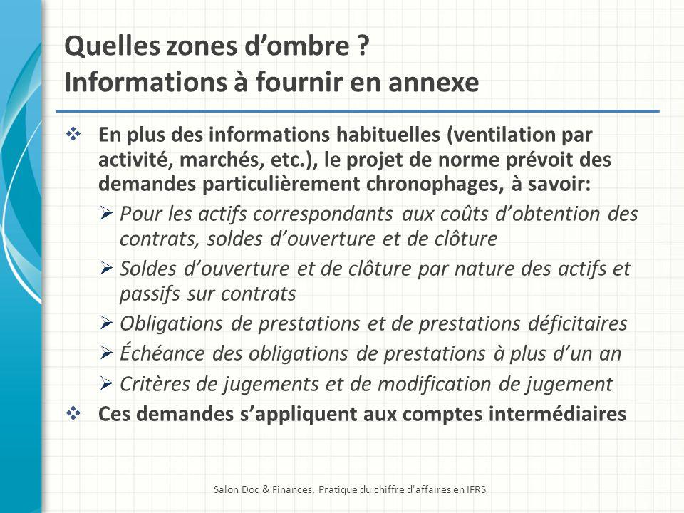 Quelles zones dombre ? Informations à fournir en annexe En plus des informations habituelles (ventilation par activité, marchés, etc.), le projet de n