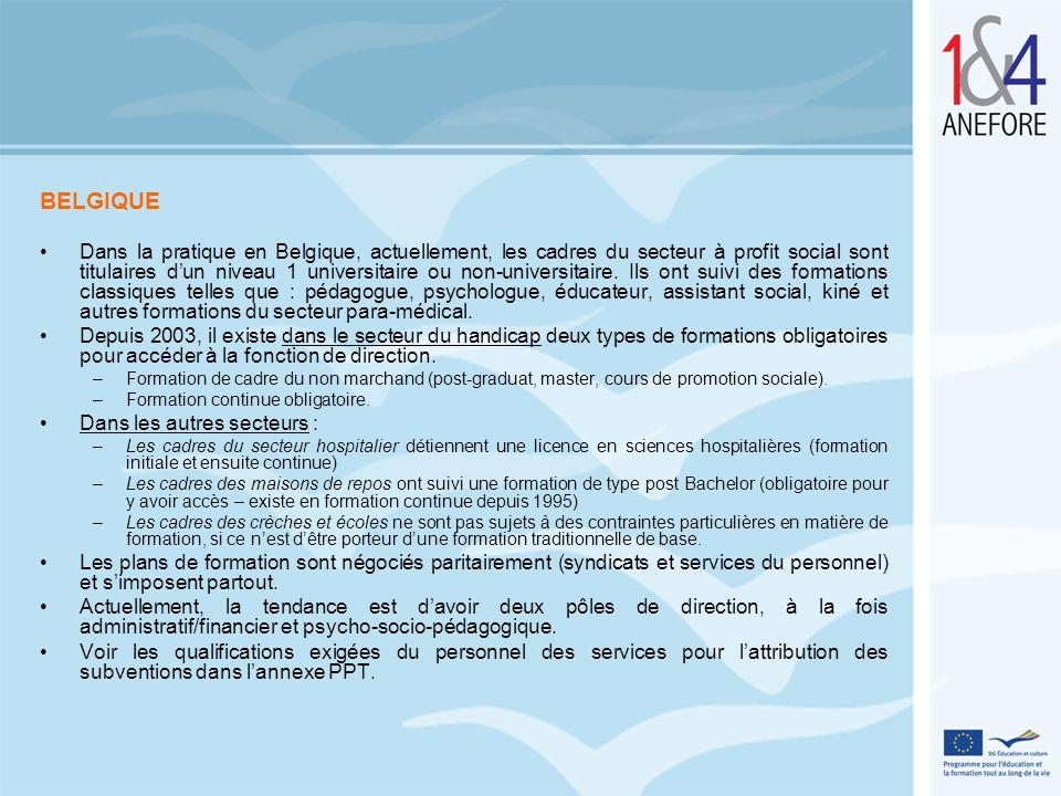 BELGIQUE Dans la pratique en Belgique, actuellement, les cadres du secteur à profit social sont titulaires dun niveau 1 universitaire ou non-universit