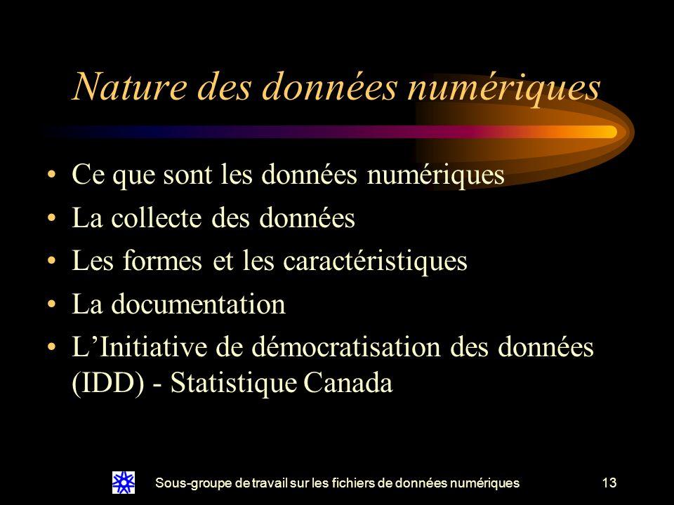 Sous-groupe de travail sur les fichiers de données numériques13 Nature des données numériques Ce que sont les données numériques La collecte des données Les formes et les caractéristiques La documentation LInitiative de démocratisation des données (IDD) - Statistique Canada