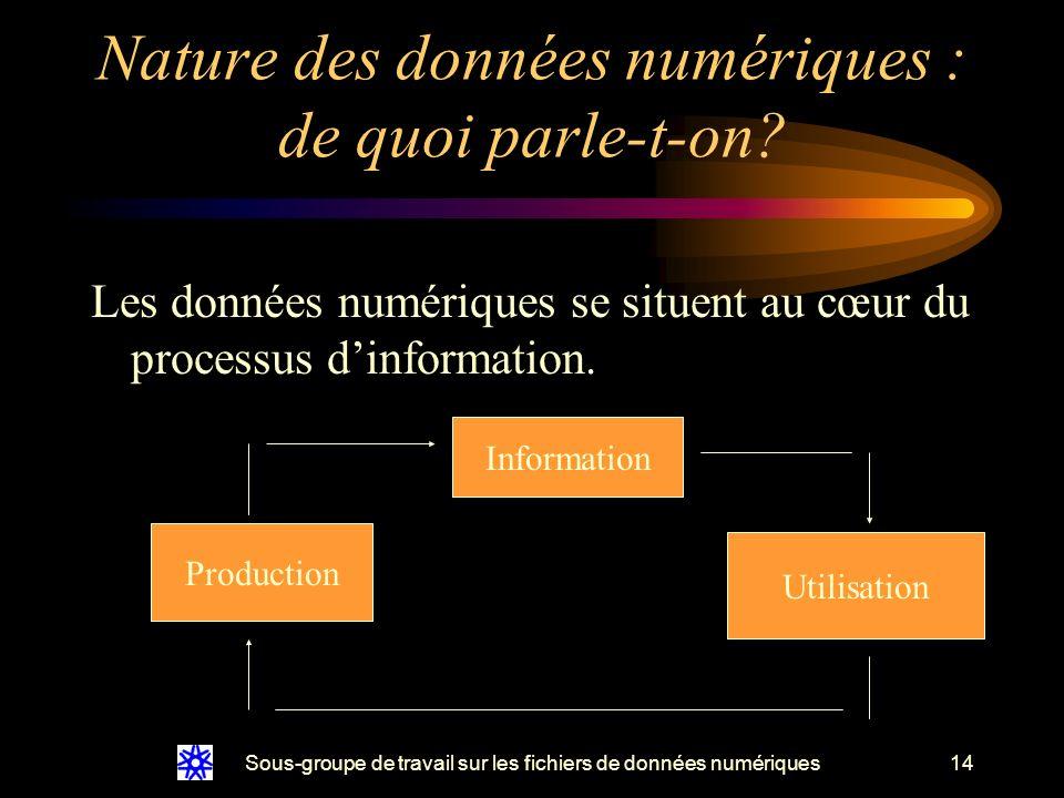 Sous-groupe de travail sur les fichiers de données numériques14 Les données numériques se situent au cœur du processus dinformation.