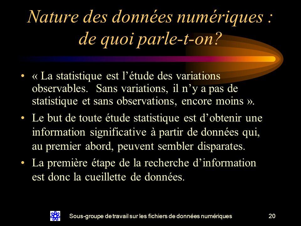 Sous-groupe de travail sur les fichiers de données numériques20 Nature des données numériques : de quoi parle-t-on.