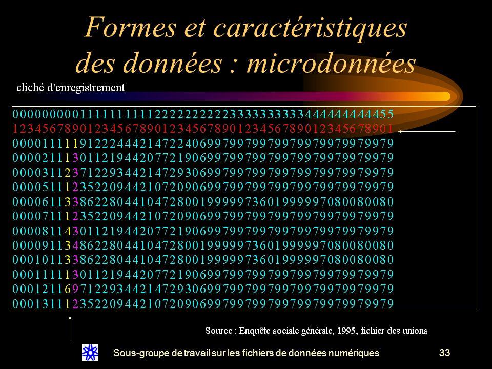 Sous-groupe de travail sur les fichiers de données numériques33 Formes et caractéristiques des données : microdonnées