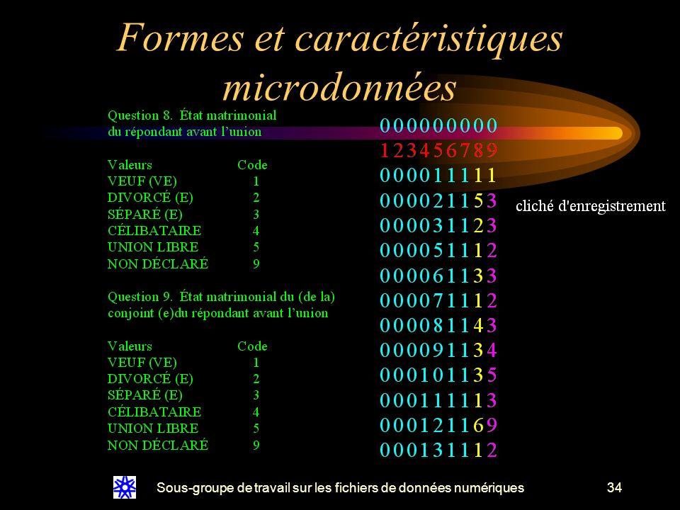 Sous-groupe de travail sur les fichiers de données numériques34 Formes et caractéristiques microdonnées