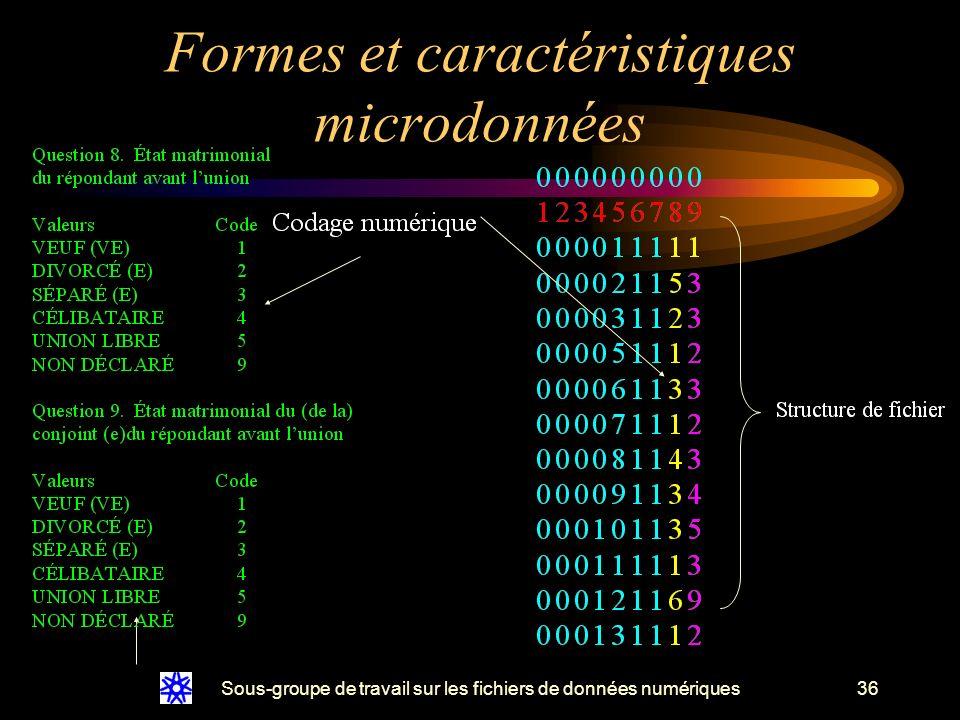 Sous-groupe de travail sur les fichiers de données numériques36 Formes et caractéristiques microdonnées