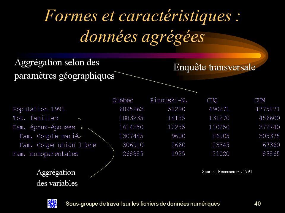 Sous-groupe de travail sur les fichiers de données numériques40 Formes et caractéristiques : données agrégées
