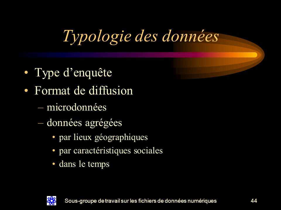 Sous-groupe de travail sur les fichiers de données numériques44 Typologie des données Type denquête Format de diffusion –microdonnées –données agrégées par lieux géographiques par caractéristiques sociales dans le temps