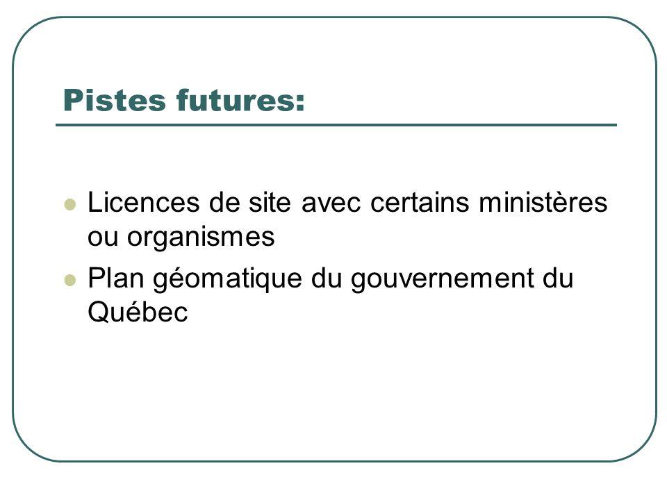Pistes futures: Licences de site avec certains ministères ou organismes Plan géomatique du gouvernement du Québec