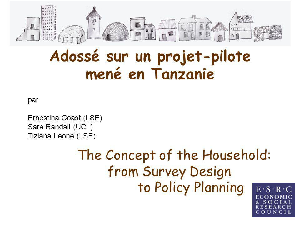 Adossé sur un projet-pilote mené en Tanzanie par Ernestina Coast (LSE) Sara Randall (UCL) Tiziana Leone (LSE) The Concept of the Household: from Survey Design to Policy Planning