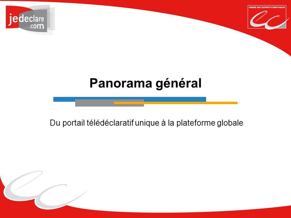 Panorama général Du portail télédéclaratif unique à la plateforme globale