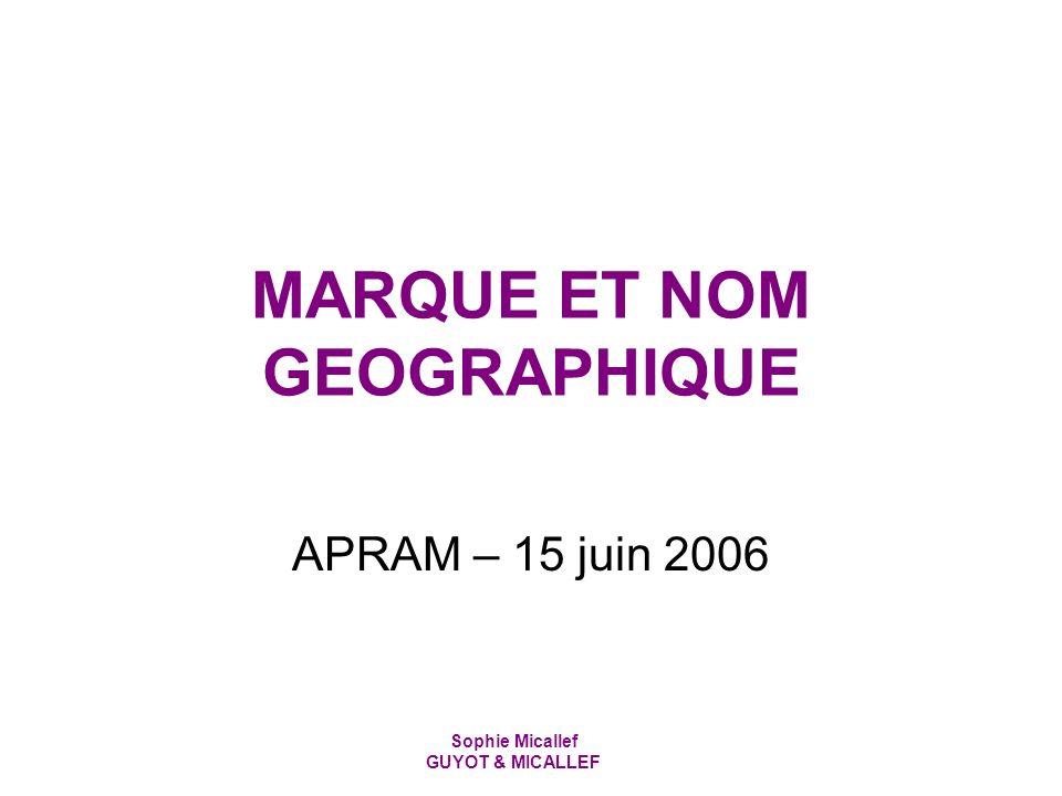 Sophie Micallef GUYOT & MICALLEF MARQUE ET NOM GEOGRAPHIQUE APRAM – 15 juin 2006
